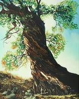 Original oil painting big tree