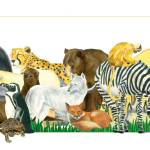 """""""Animal Collection"""" by Lisa_Pluchino"""