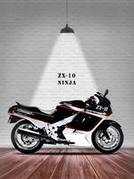 The Kawasaki ZX-10 Ninja Motorcycle