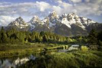Schwabacher Landing in Grand Teton National Park