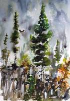 Fir Trees Landscape Portrait Watercolors Nature