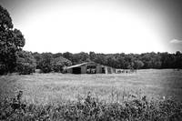 Texas Forgotten - Countryside Barn BW