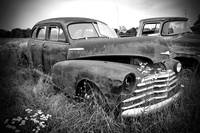 Texas Forgotten - In Field BW