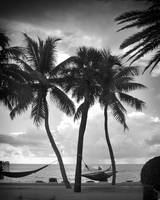 Hammock on the Beach BW