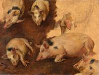 Anders Askevold~Study of six Pigs