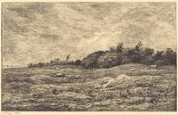 Charles-François Daubigny~The Meadow at Grave, nea