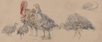 David Cox~Study of Turkeys