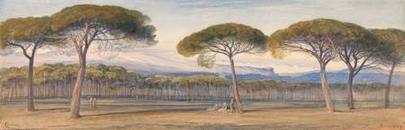 Edward Lear~A View of the Pine Woods Above Cannes