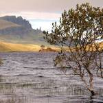 """Storr loch and the Old Man of Storr"" by Skyepix"