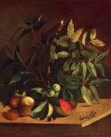 Estevao Silva~Fruits