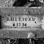 """American"" by JCasey"