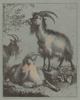 Francesco Londonio~Three Goats