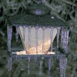 """""""Ice storm January 2007"""" by parexcellance"""