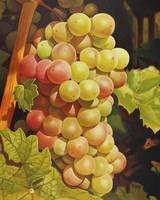 Original oil painting red and green grapes