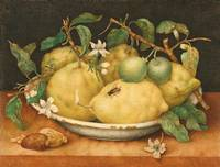 Giovanna Garzoni~Still Life with Bowl of Citrons