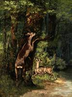 Gustave Courbet~Deer in the Forest