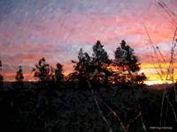 Christmas 07 Sunrise Three