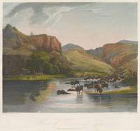 Karl Bodmer and Rawdon, Wright & Hatch~Herds of Bi