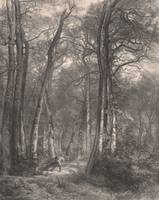 Karl Bodmer~In the Forest or Tall Timber (En Forêt
