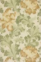 Maxwell & Co., S.A.~Sidewall - sample