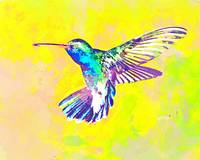 Abstract Watercolor - Hummingbird Dance I