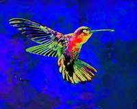 Abstract Watercolor - Hummingbird Dance II