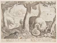 Stradanus~Fight between Elephants and Snakes, plat
