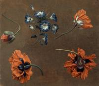 Unknown artist~Poppies and Tradascanthus