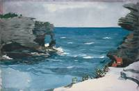 Winslow Homer~Rocky Shore, Bermuda
