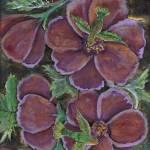"""hummingbirds and flowers"" by LanorasDesigns"
