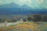 Granville Seymour Redmond~California Poppy Field