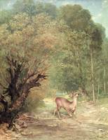 Gustave Courbet~The Hunted Roe-Deer on the alert,