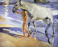 Joaquin Sorolla y Bastida~Washing the Horse