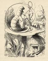 John Tenniel~Advice from a Caterpillar, from 'Alic