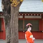 """Geisha in Tokyo"" by ryanchirnomas"