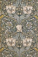 William Morris~The Art of William Morris