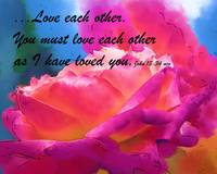 Love Each Other Watercolor Rose Bloom
