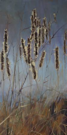 Cattails #7