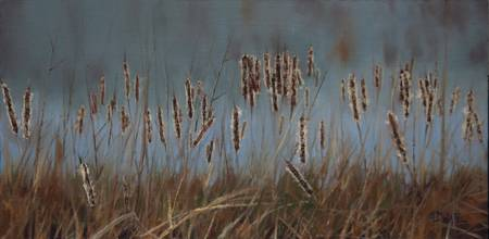 Cattails #6