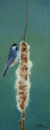 Carolina Chickadee and Cattail