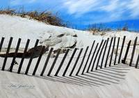 Beach Sand Dune Fence by Robin Amaral