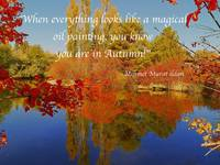 Mehmet Murat ildan Poetry-Quotes Art Prints