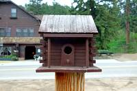 Glen Haven Bird Houses Study 4
