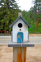 Glen Haven Bird Houses Study 10