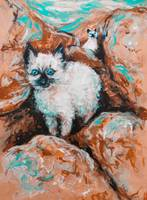 Feral Tenderness siamese kittens among the rocks