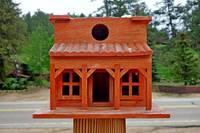 Glen Haven Bird Houses Study 14