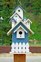 Glen Haven Bird Houses Study 15