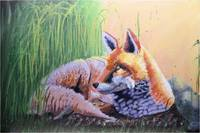 Wildlife Painting of a Fox at Rest