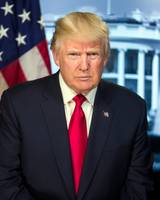 President Donald Trump Portrait