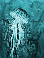 Jellyfish in Blue